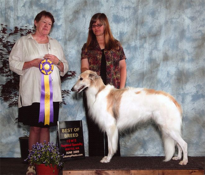 Tuscan - Best in Specialty Show